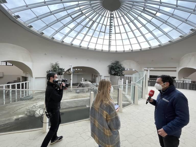 Tierpark München Livestream für Gong96.3